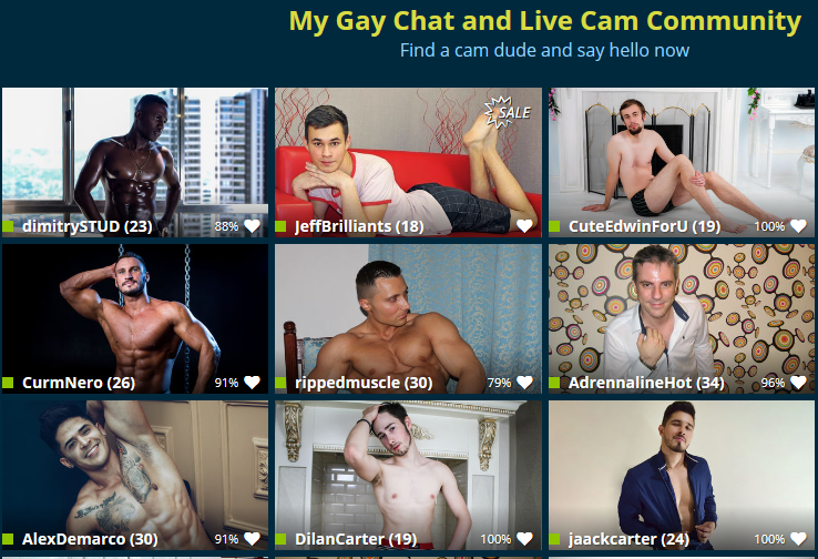 Gay Chat Site Review